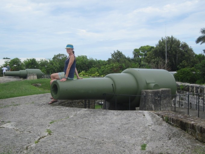 The canons of Fort Hamilton