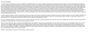 Citi AA Exec Terms and Conditions