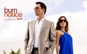 There's a Burn Notice on My Points: Introduction