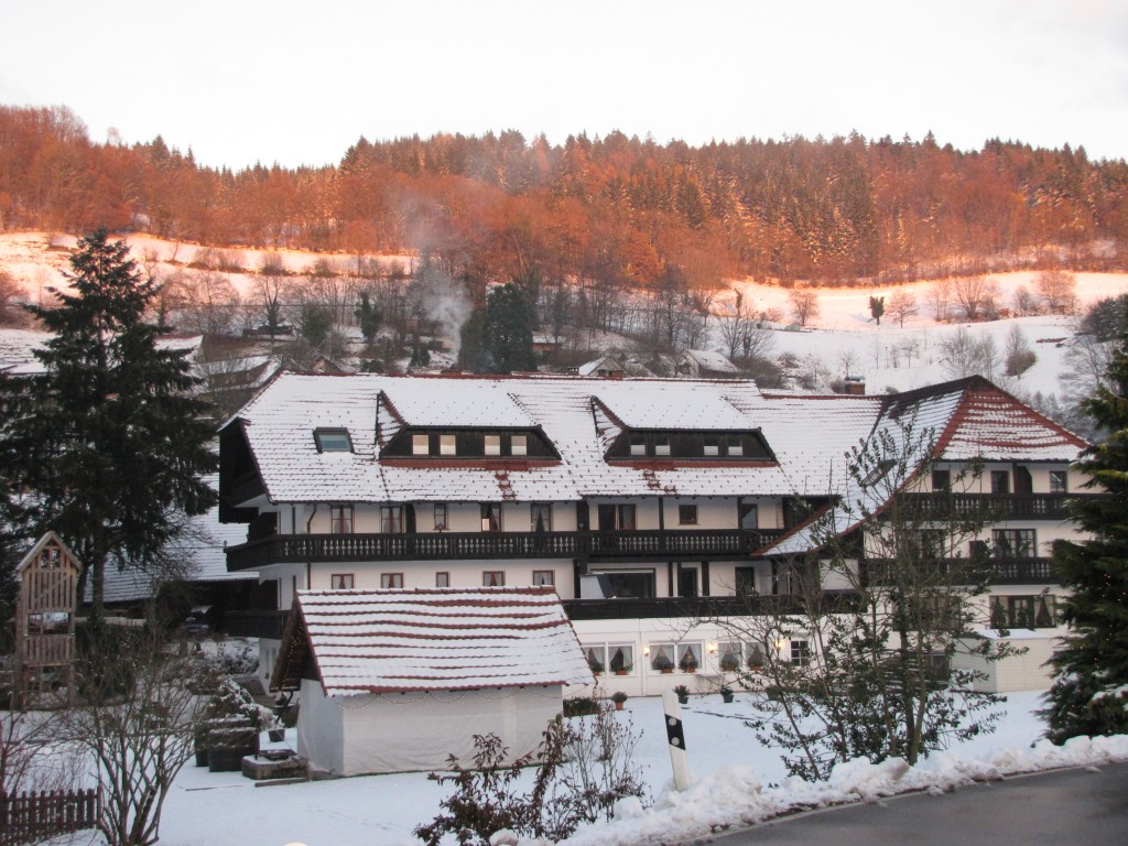 The family suite that takes up the left half of the 4th floor of this amazing little German Inn can't be booked or paid for with points. It is coded a restaurant. But we definitely recommend it!