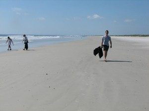 Little Talbot Island State Park: file miles of beach like this
