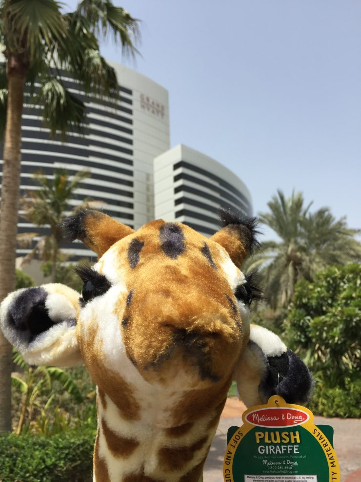 A selfie with the Grand Hyatt Dubai in the background