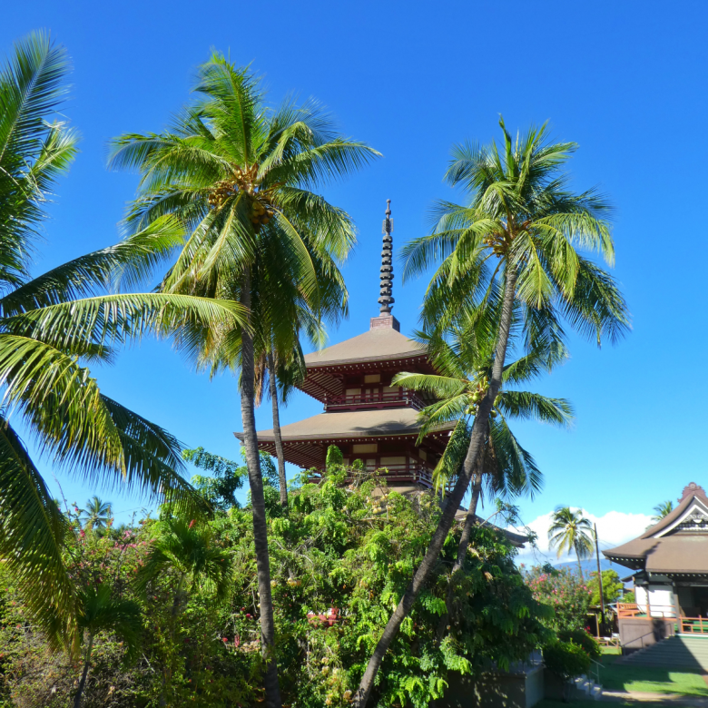 Why we need Hawaii right now: Jodo Buddhist Mission in Lahaina, Maui.