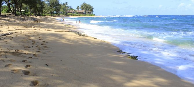 Best Beaches in Kauai for Babies and Toddlers