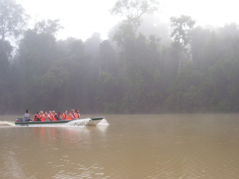 Morning on the Kinabatangan