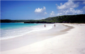 Corcho Beach in Vieques island, Puerto Rico Source taken from en.wiki Date July 12th, 2005 Author Joelr31