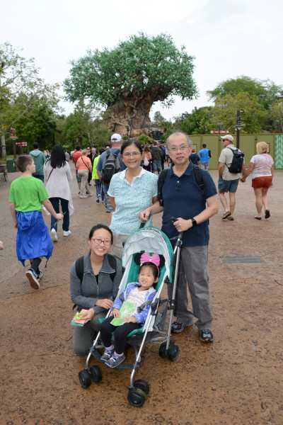 Daring to Disney: Touring Animal Kingdom with a toddler