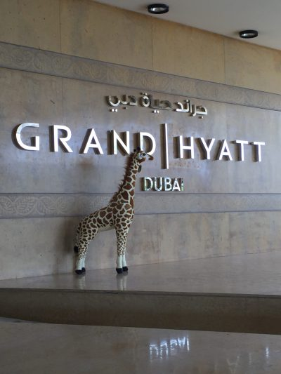 Diamonde the Giraffe visits the Grand Hyatt Dubai